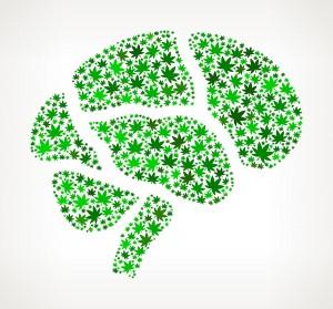 Smoking Marijuana Reshapes Your Brain