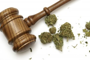 New York Senator Knows Weed Bill Won't Pass but Pushes Anyway
